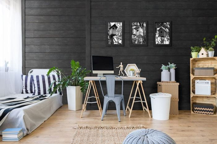 Rustic Charcoal shiplap computer room bed plant trim